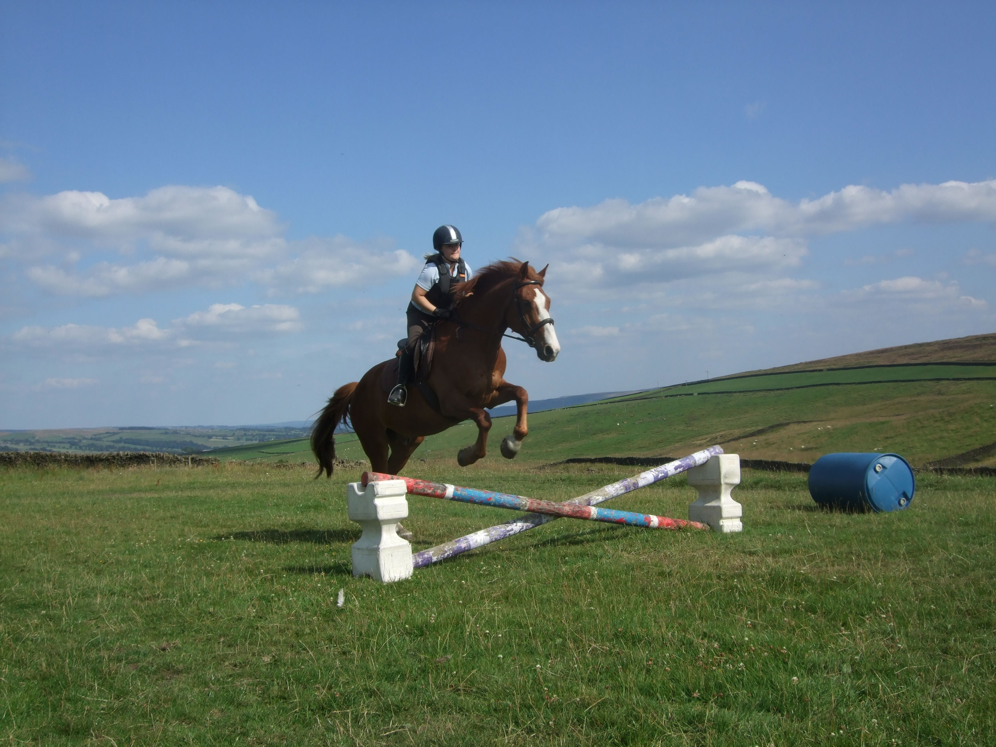 Draughton Riding Centre Livery Stables Lessons Bhs